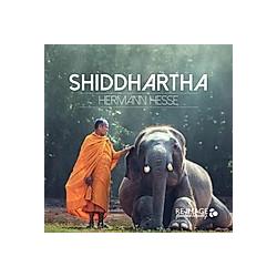 Siddhartha  MP3-CD - Hörbuch