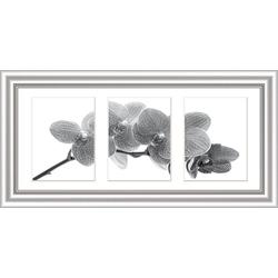 Bilderrahmen ELEGANCE silber (BH 56x29 cm)
