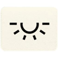 Jung 33L,Kalotte mit Symbol, lichtundurchlässig, weiß, Symbol Licht