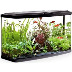 Fluval Vue Aquarienset, 87 Liter Aquarium: 76 x 30 x 45,7 cm