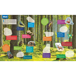 Tessloff Verlag Spiel, BOOKii® Was ist was - Stickeratlas: Tiere aus