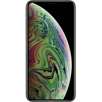 iPhone XS Max 256GB Space Grau
