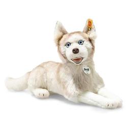 Steiff Siberian Dui Husky, 35 cm