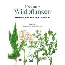 Essbare Wildpflanzen: Buch von Liz Knight