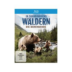 In Skandinaviens Wäldern - Die Bärenbande Blu-ray