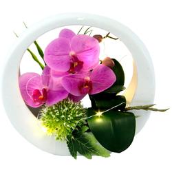 Kunstorchidee Orchidee, I.GE.A., Höhe 20 cm, im Keramiktopf, mit LED-Beleuchtung