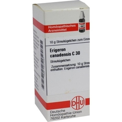 ERIGERON CANADENSIS C 30 Globuli 10 g
