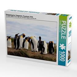 Königspinguine, Patagonien, Feuerland, Chile Lege-Größe 64 x 48 cm Foto-Puzzle Bild von Ute Köhler Puzzle