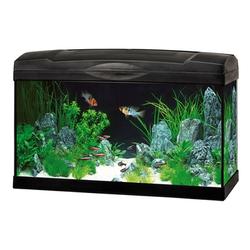 Marina Premium 63 Glasaquarium-Set, schwarz - 60x30x35 cm