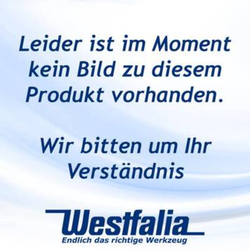 Hauswasserwerk HWW 1000/25 Plus F mit Vorfilter