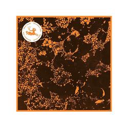 Downliners Sekt - Silent Ascent (CD)
