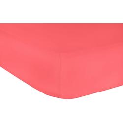Spannbettlaken Elastan Classic, Mr. Sandman, geeignet für Wasserbetten rot 90-100 cm x 200-220 cm