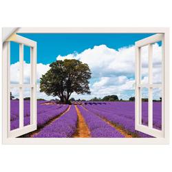 Artland Wandbild Fensterblick Lavendelfeld im Sommer, Fensterblick (1 Stück) 100 cm x 70 cm