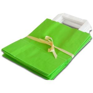 100 Papiertragetaschen 18x8x22 Papiertüten Tragetaschen grün Papiertragetasche