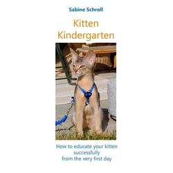 Kitten Kindergarten als Buch von Sabine Schroll