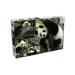 WWF Steckpuzzle WWF Puzzle Pandas (1000 Teile), 1000 Puzzleteile