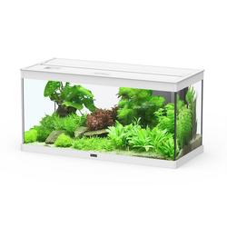 Aquatlantis Aquarium Style 80 LED 2.0, BxTxH: 80x35x40 cm, 86 l weiß