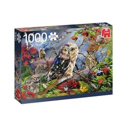 Jumbo Spiele Puzzle Puzzles 501 bis 1000 Teile JUMBO-18859, Puzzleteile