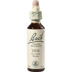 Bach-Blüte Vine