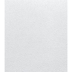 Deckenpaneele (16 Platten) weiß