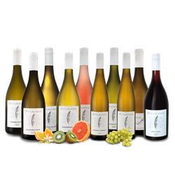 Kennenlernpaket Weingut Studier aus der Pfalz