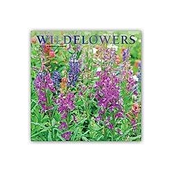 Wildflowers - Wildblumen 2021 - 16-Monatskalender