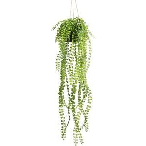 Künstliche Zimmerpflanze Ficus-Pumila-Hängeampel Ficus, Botanic-Haus, Höhe 60 cm grün