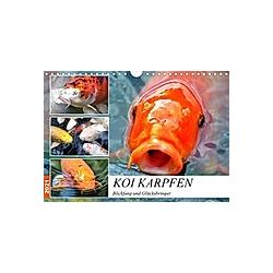 Koi Karpfen. Blickfang und Glücksbringer (Wandkalender 2021 DIN A4 quer) - Kalender