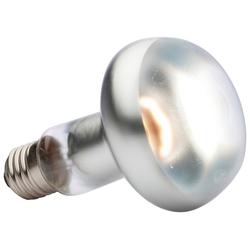 Exo Terra EX Tight Beam Tageslichtlampe Spezialleuchtmittel, E27, Tageslichtweiß, 100 Watt
