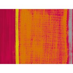 DUNI Tischsets aus Papier, Einwegset mit Motiv Motiv: Gustav, 1 Karton = 4 x 250 Stück = 1000 Sets