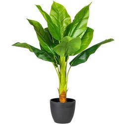 Künstliche Zimmerpflanze Sammy Bananenpflanze, my home, Höhe 70 cm