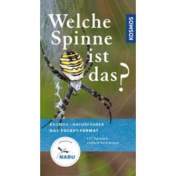 Welche Spinne ist das?: eBook von Martin Baehr