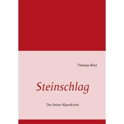 Steinschlag als Buch von Thomas Rösl