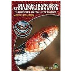 Die San-Francisco-Strumpfbandnatter. Martin Hallmen  - Buch