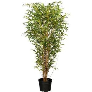 Kunstbaum Bambus Bambus, Creativ green, Höhe 150 cm grün