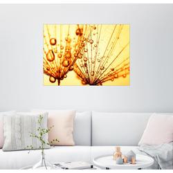 Posterlounge Wandbild, Goldtröpfchen 90 cm x 70 cm