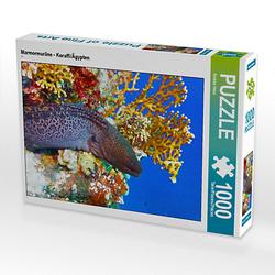 Marmormuräne - Koraffi/Ägypten Lege-Größe 64 x 48 cm Foto-Puzzle Bild von Andrea Hess Puzzle