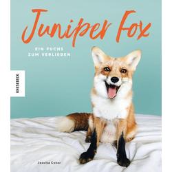 Juniper Fox als Buch von Jessika Coker/ Juniper