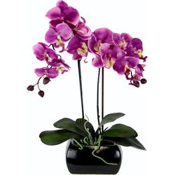 Kunstpflanze Phalaenopsis, I.GE.A., Höhe 58 cm rosa