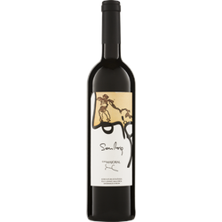 Cabernet Son Roig Mallorca DO 2014 Can Majoral Bio