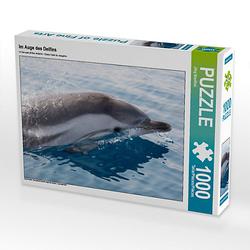 Im Auge des Delfins Lege-Größe 64 x 48 cm Foto-Puzzle Bild von Jörg Bouillon Puzzle