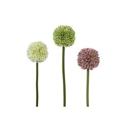 Kunstblume Kunstblume, Creativ green, Höhe 64 cm