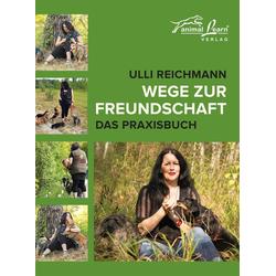 Wege zur Freundschaft als Buch von Ulli Reichmann