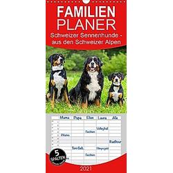 Schweizer Sennenhunde - aus den Schweizer Alpen - Familienplaner hoch (Wandkalender 2021 , 21 cm x 45 cm, hoch)