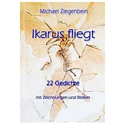 Ikarus fliegt. Michael Ziegenbein  - Buch